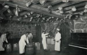 zangheri1903