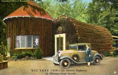 BigTreeInnca1930