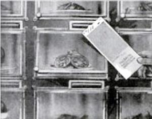automaticILL1925cardsystem
