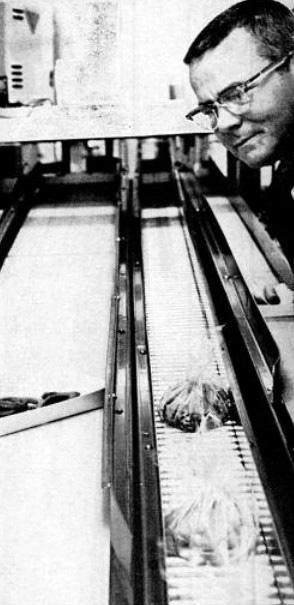 automatedJay'sdrive-in1966belt
